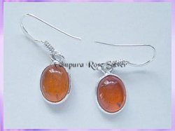 ER4 Oval Amber Earrings